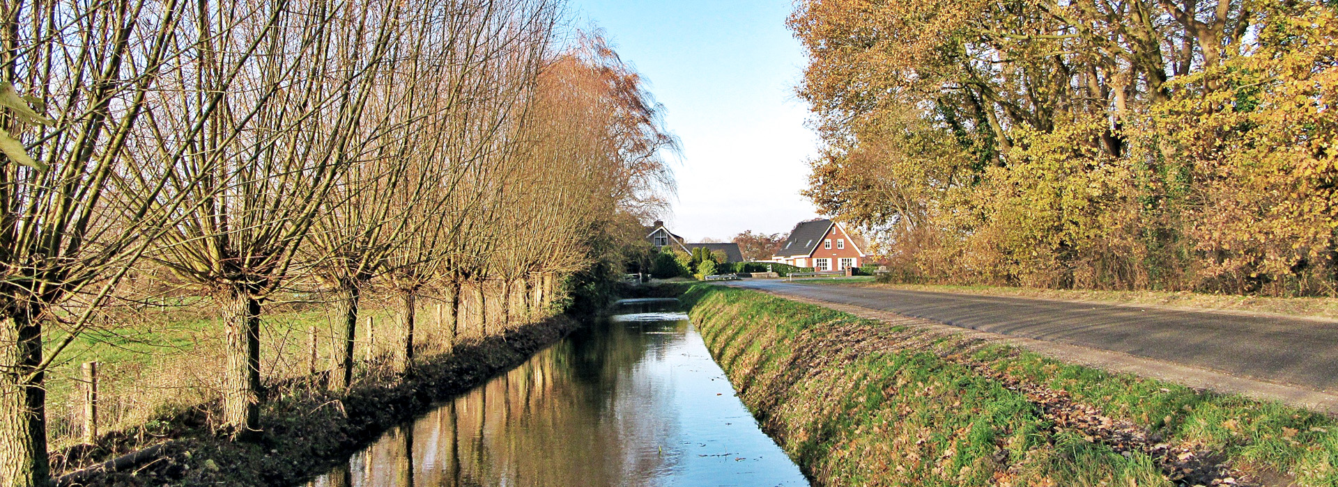 nature in Zoetermeer