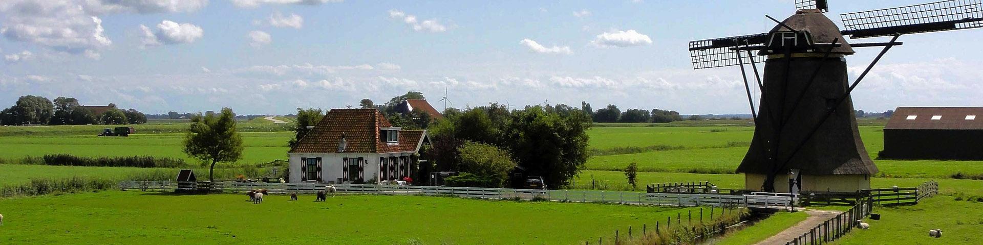 dutch country side landscape