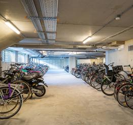 bike shed DNA in Rotterdam