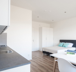 dining table and large bed in studio apartment