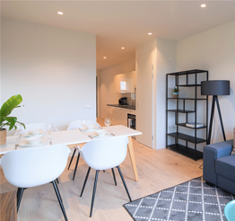 furnished modern apartment