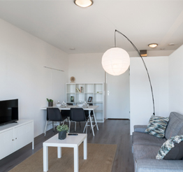 living and dining room in The Y with large standing light