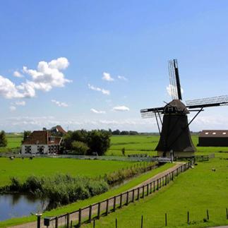 dutch windmill on a farm